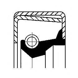 Уплотняющее кольцо, ступица колеса CORTECO 01032105B